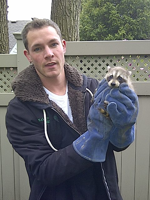 Halton Wildlife and Pest Control Services