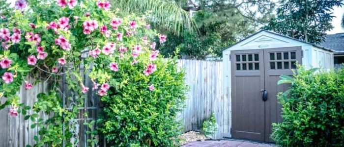 What Animals are Under My Shed? Can I animal proof it?